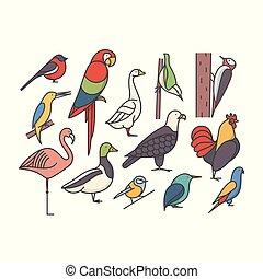 Bird, vector outline illustration, icon set, white background