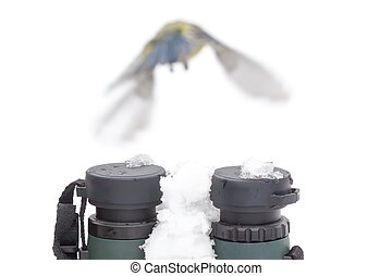 Bird watching concept in winter - Binoculars with snow and a...