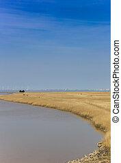Bird watching hut at the coast of Groningen