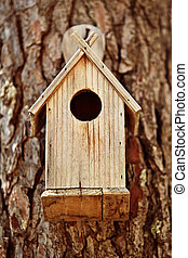 Bird Wooden House in the Forest