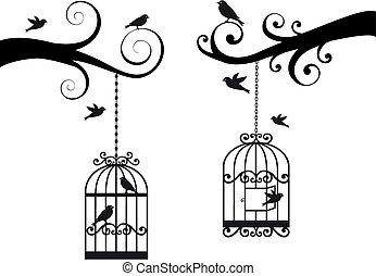 birdcage, e, uccelli, vettore