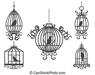 birdcage, wektor, ptaszki