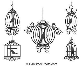 birdcage, z, ptaszki, wektor