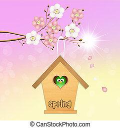 birdhouse, en, primavera