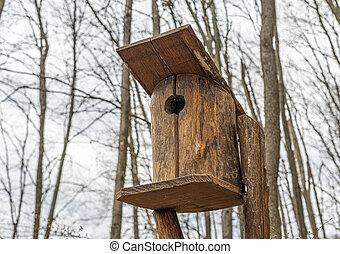Birdhouse for birds in the forest.