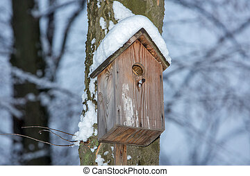 Birdhouse hanging on a tree in winter with snow