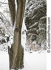Birdhouse in Snow Storm
