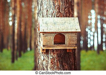 Birdhouse in the woods