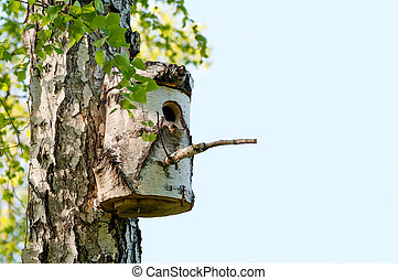 birdhouse on a tree in spring