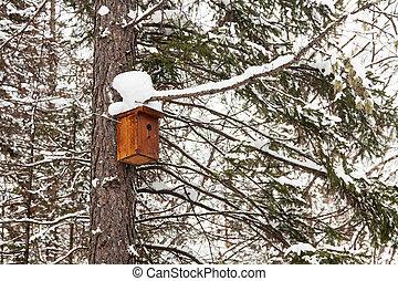 Birdhouse on a tree trunk. Winter