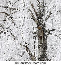 Birdhouse on snowy tree