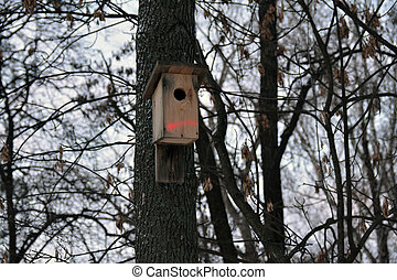 birdhouse on the trunk with a marker line