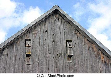 birdhouses, dos