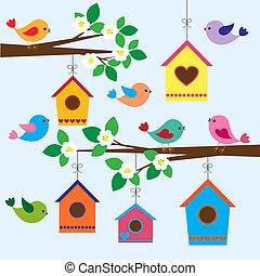 birdhouses, em, primavera