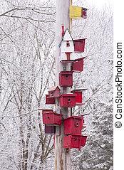 Birdhouses in Winter