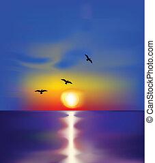 birds., וקטור, שקיעה, ים