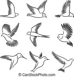 birds., ベクトル, illustration.