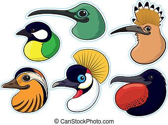 Birds 4 - Series of colourful bird heads set as fridge...