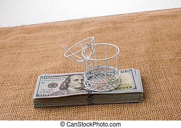 Birds cage on bundle of US dollar banknote
