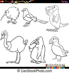 birds cartoon coloring page