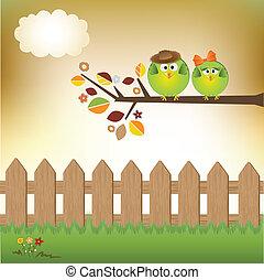Birds couple in love