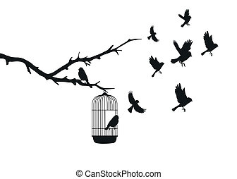 birds departed from a cage