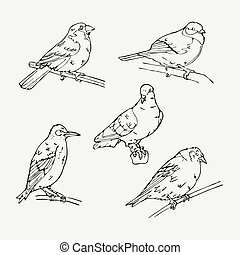 Birds engraved style. Stamp, seal. Simple sketch. - Birds...