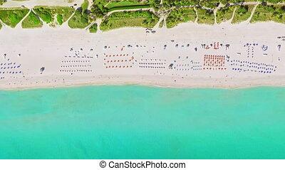 bird's eye view miami beach