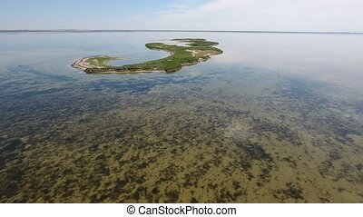 Bird`s eye view of green wetlands on the shoal of...
