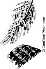 bird's feathers drawing