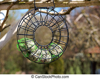 Birds feeder hanged on a tree