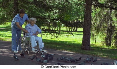 Birds Feeding - Aftercare patient accompanied by male nurse...