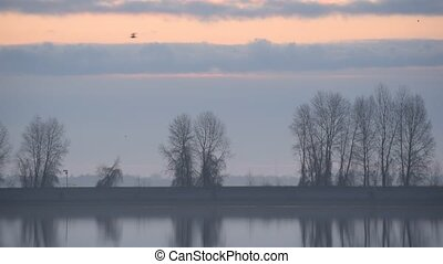 Birds fly at dusk over calm water surface of lake or river...