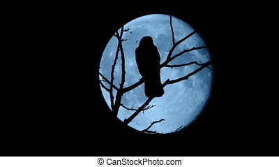 Birds Fly Off Branches In Front Of Full Moon