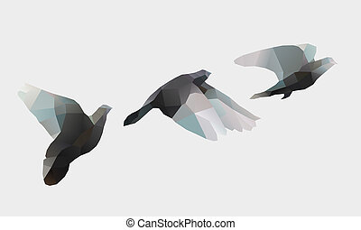 birds fly on white