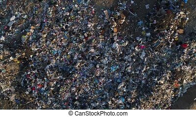 Birds fly over landfills. Pollution of the environment, pile of garbage.