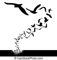 birds flying - lot of birds flying; silhouette style...