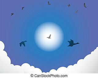 Birds flying past sun