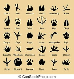 Birds footprints and animals tracks vector silhouettes