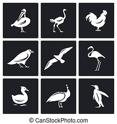 Birds icons set. Vector Illustration