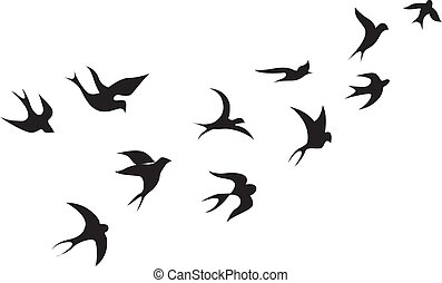 Birds, illustration, vector on white background.