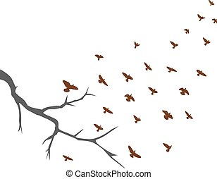 birds - vector flying birds