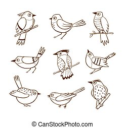 Birds in different poses