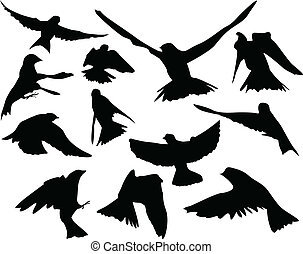 Birds in flight Silhouettes