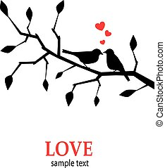 Birds in love on a branch