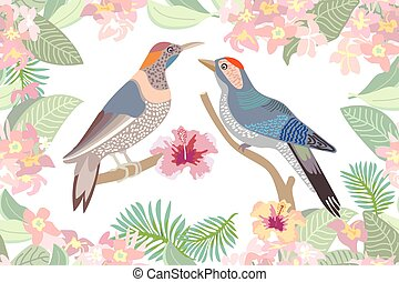 Birds in the garden.