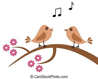 birds in the spring singing