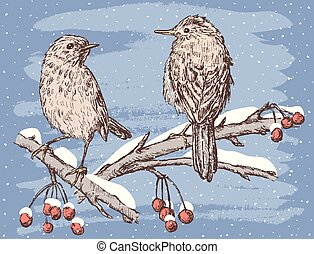 Birds in the winter day