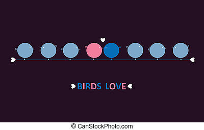 birds love