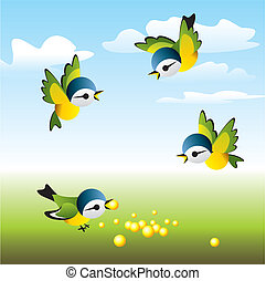 birds lunch